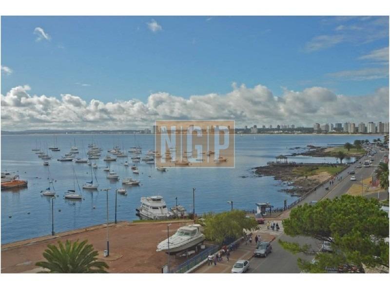 espectacular decorado la mejor vista al puerto-ref:1903