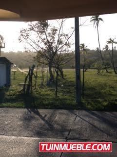 espectacular lote en san andres islas de 44.309 mts 2, gl
