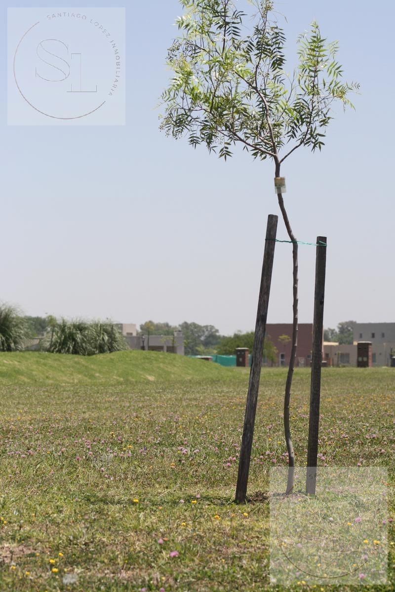 espectacular lote en venta en pilar del este san ramiro