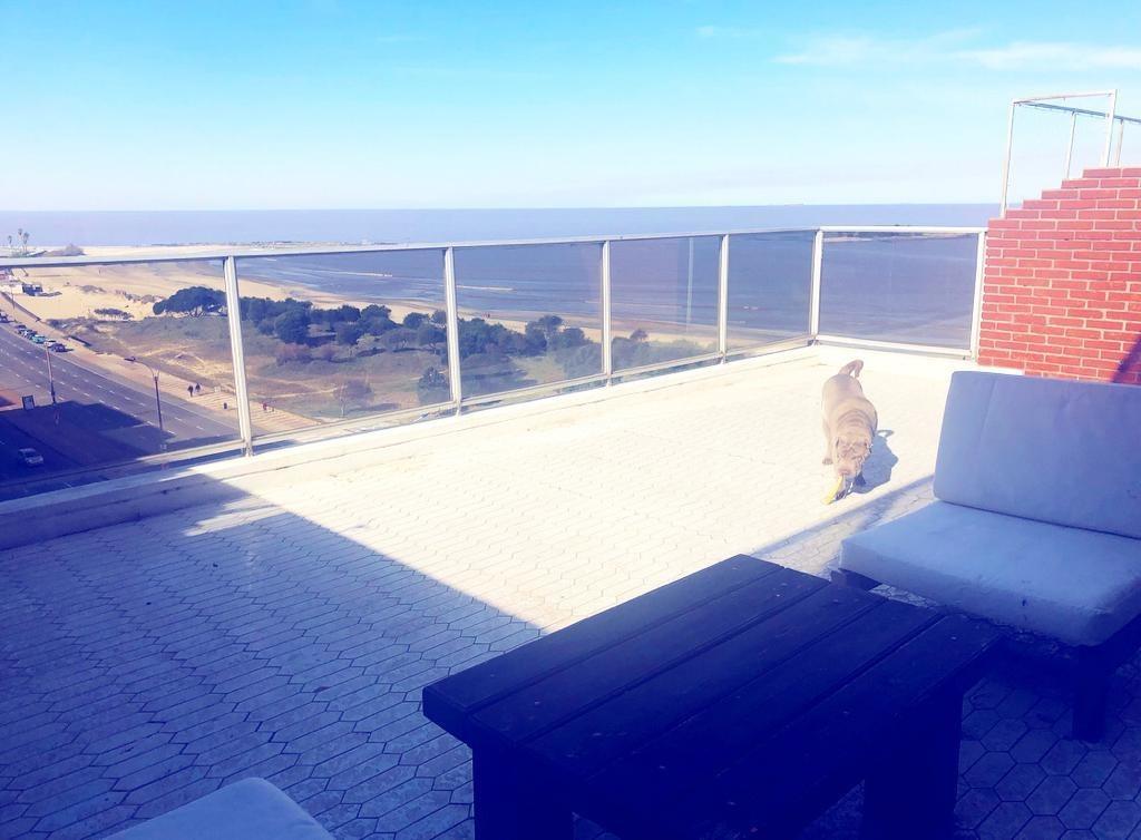 espectacular penthouse duplex en la rambla de malvin!