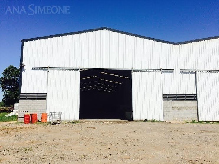 espectacular  planta industrial/ depósito de 600 m2
