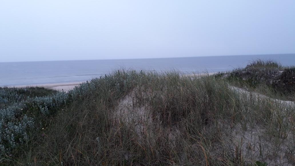espectacular terr. frente al mar jaureguiberry