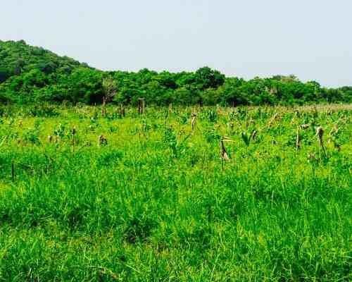 espectacular terreno en bahías de huatulco, oaxaca