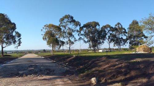 espectacular terreno loteo oasis iv en la mejor zona