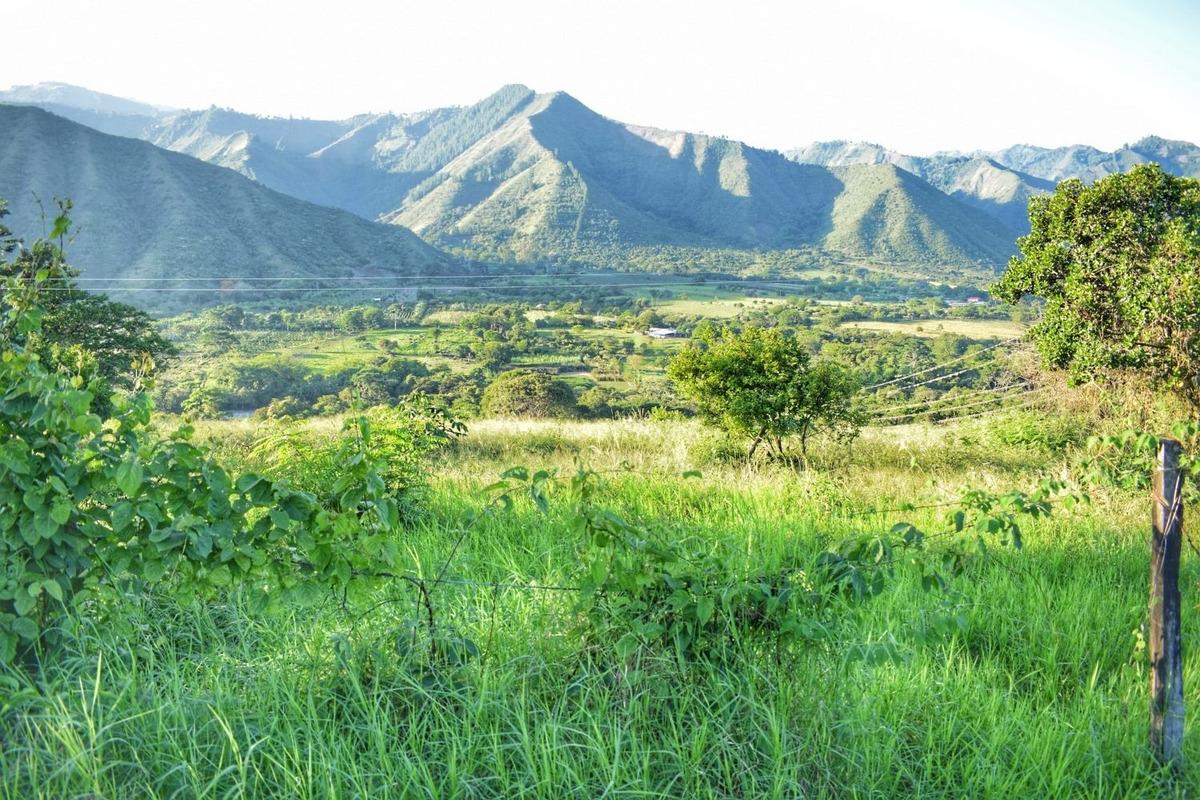 espectaculares lotes campestres a 3.5 km de la plata huila.