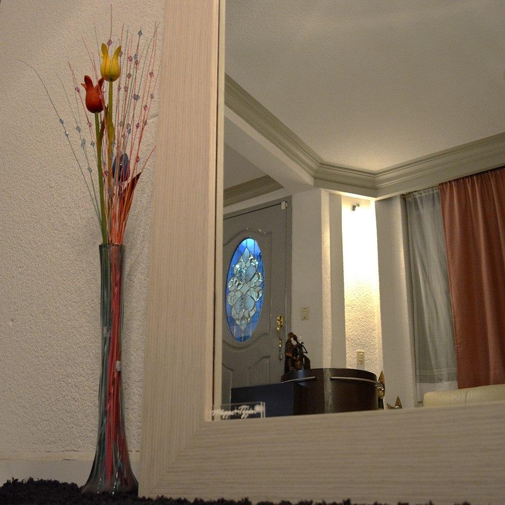 Espejo cuerpo completo madera de zebrano sala comedor for Espejos de cuerpo completo vintage