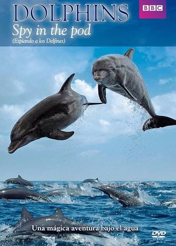 espiando a los delfines documental bbc pelicula dvd