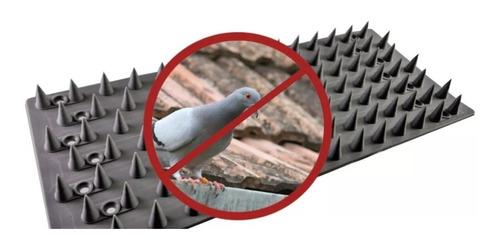espículas anti pombos/gatos inibidor d acesso 15 metros/60pç