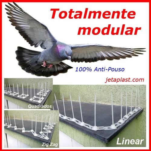 espiculas repele,  contra anti pombos kit 30 metros