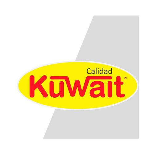 espuma poliuretano expandido aerosol 300ml kuwait pintumm