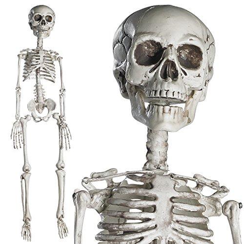 09a55eb0e9d Esqueleto Con Articulaciones Moviles Para El Mejor Halloween ...