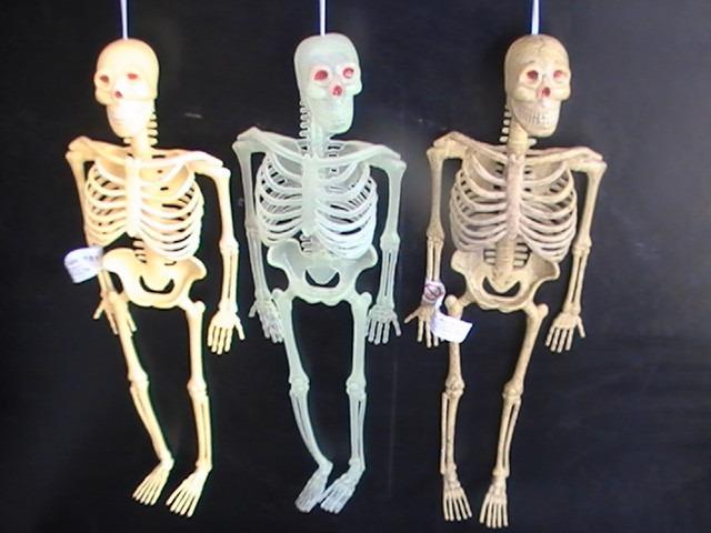 Esqueleto De Goma Muñeco Flexible Hobbies El Cuerpo Humano - $ 150 ...