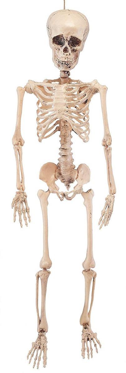 Esqueleto Decoración Articulaciones 4 Pies Halloween Prextex ...