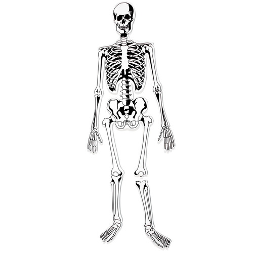 esqueleto del piso de espuma puzzle