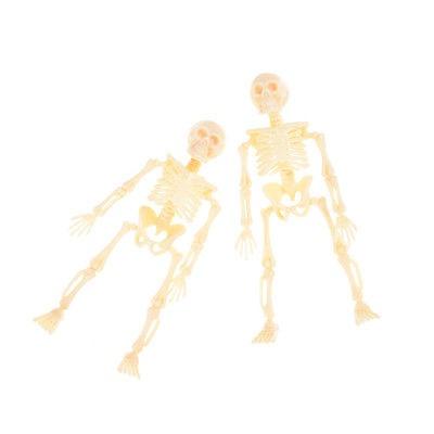 Esqueleto Humano Modelo Cráneo Cuerpo Completo Mini Figura ...