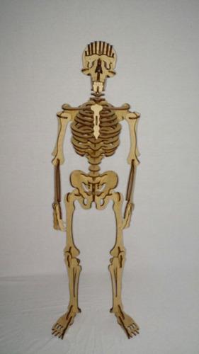 esqueleto humano quebra cabeça 3d  mdf 3mm sk 02