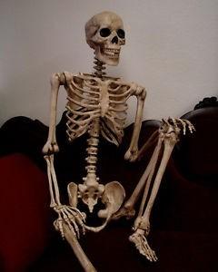 Esqueleto Humano Tamano Real Decorativo Para Halloween D Nq Np Mlm F