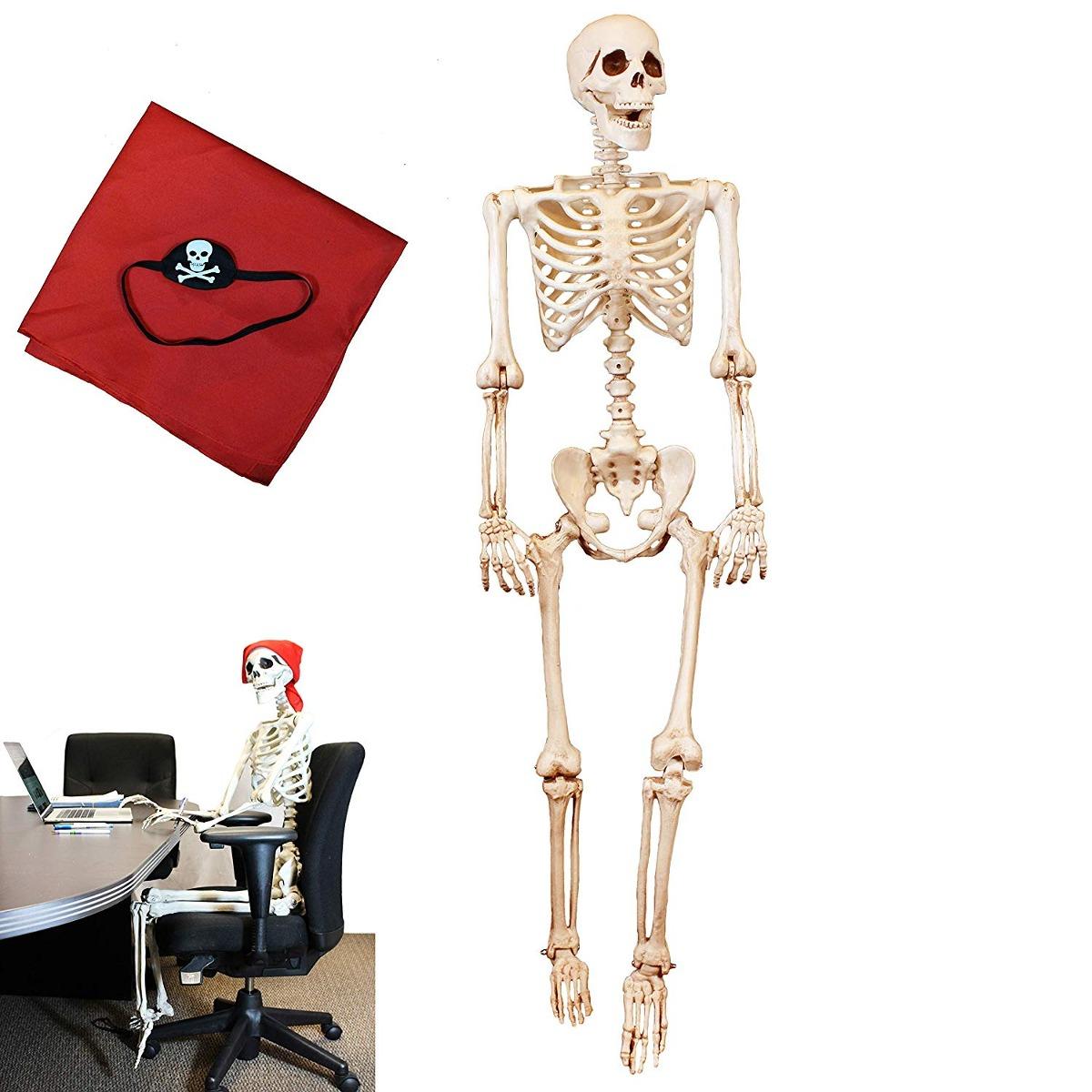 Esqueleto Para Halloween 5 Pies Largo Joyin - $ 2,549.62 en Mercado ...