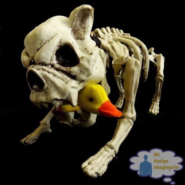 Esqueleto Perro Bulldog Adorno Halloween Tamaño Real - $ 600.00 en ...