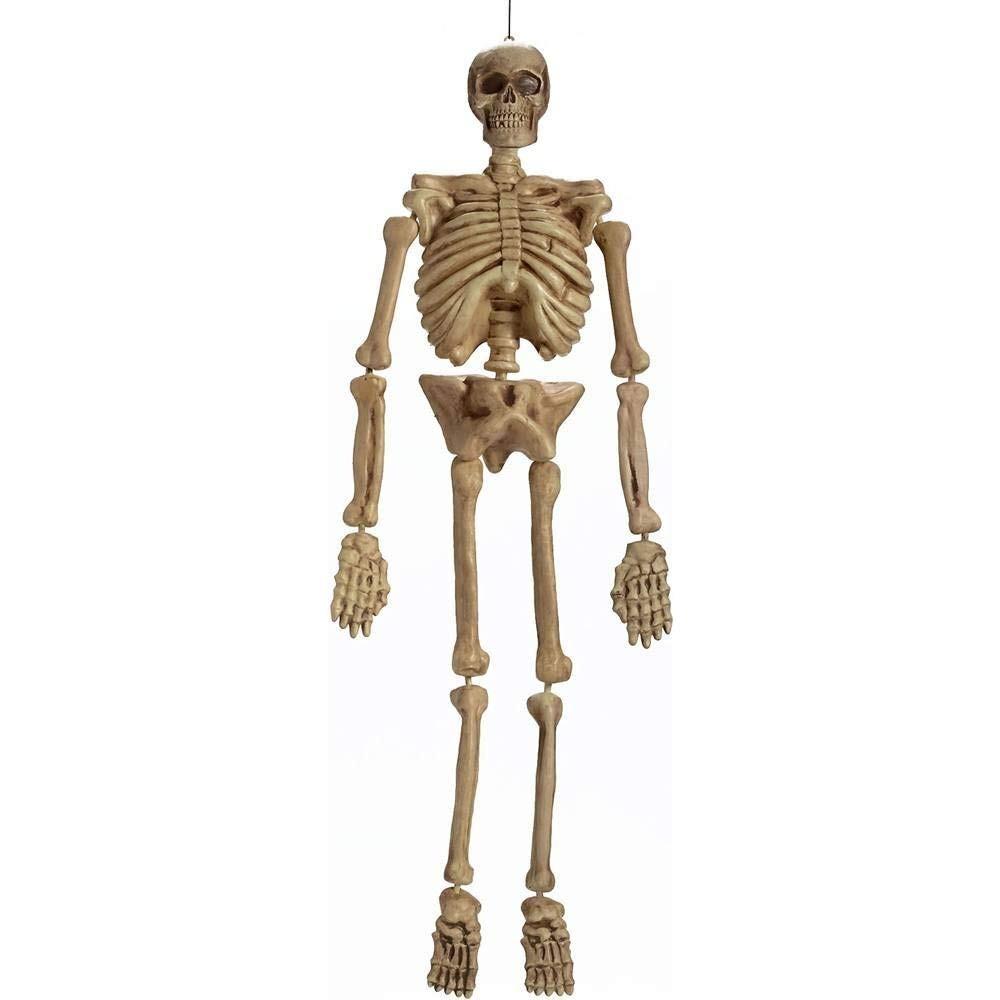 Esqueleto Realista Colgante 5 Pies Fun World Costumes - $ 2,115.60 ...
