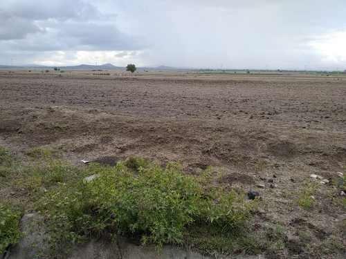 estado de mexico 5000 hectareas planas a $185.- el m2. promocion