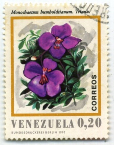 estampilla venezuela,monochaetum humboldtiaanum, 1970