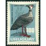 Estampilla Uruguay 1 Valor 100 Pesos 1966 El Chaja - Ave