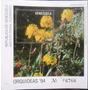 Estampillas De Venezuela Hoja De Recuerdo Orquídeas Año 94