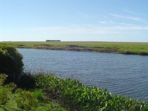 estancia completa con excelente arroyo con lagunas
