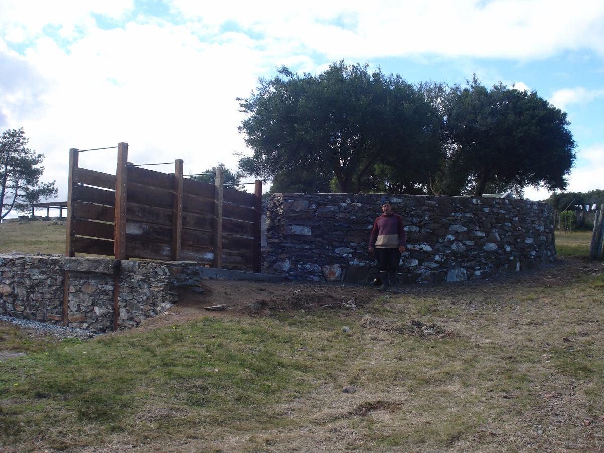 estancia forestal olivicola turistica completa. campo