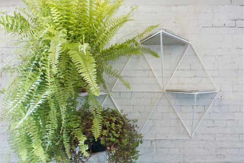 estantes piramide