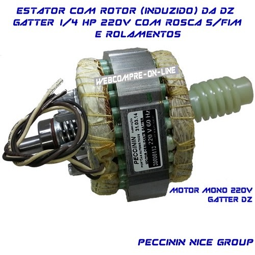 f8afa4cf507 Estator Do Motor Dz Gatter Peccinin Mono 220v60hz C induzido - R  169