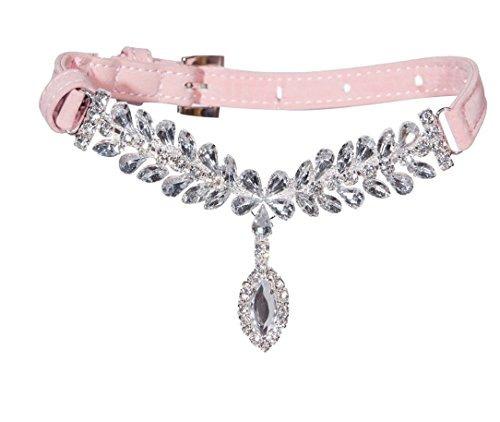 estilo collar collares de perrito del gato expawlorer rosa