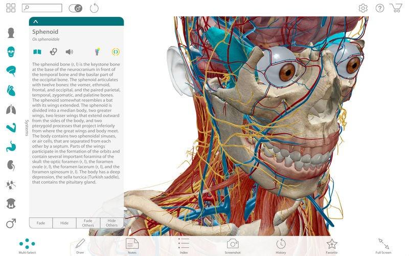 Estudiante De Medicina Software Atlas 3d Musculos Cuerpo - $ 179,00 ...