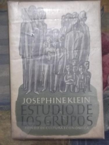estudio de los grupos josephine klein