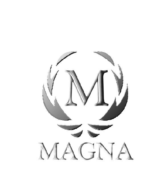 Estufa magna a le a combusti n ecol gica 75m2 mod verona for Estufas de lena usadas