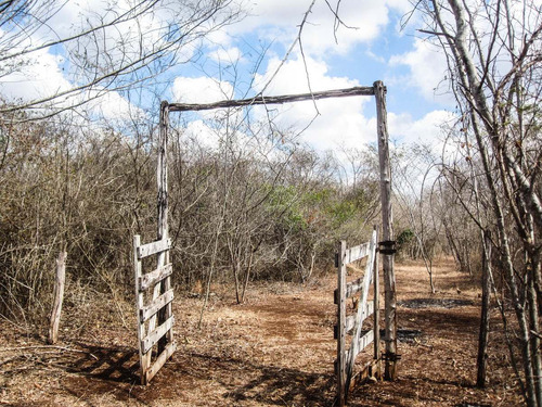 !!estupenda oportunidad de inversion..magnifico rancho en santa elena yucatan!!!