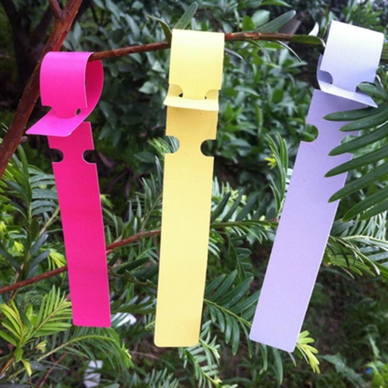 Etiquetas marcadores para plantas macetas en - Etiquetas para plantas ...