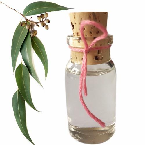 eucalipto aromaterapia aceite esencial