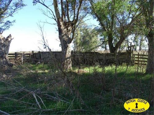 excelente campo agricola 224has navarro