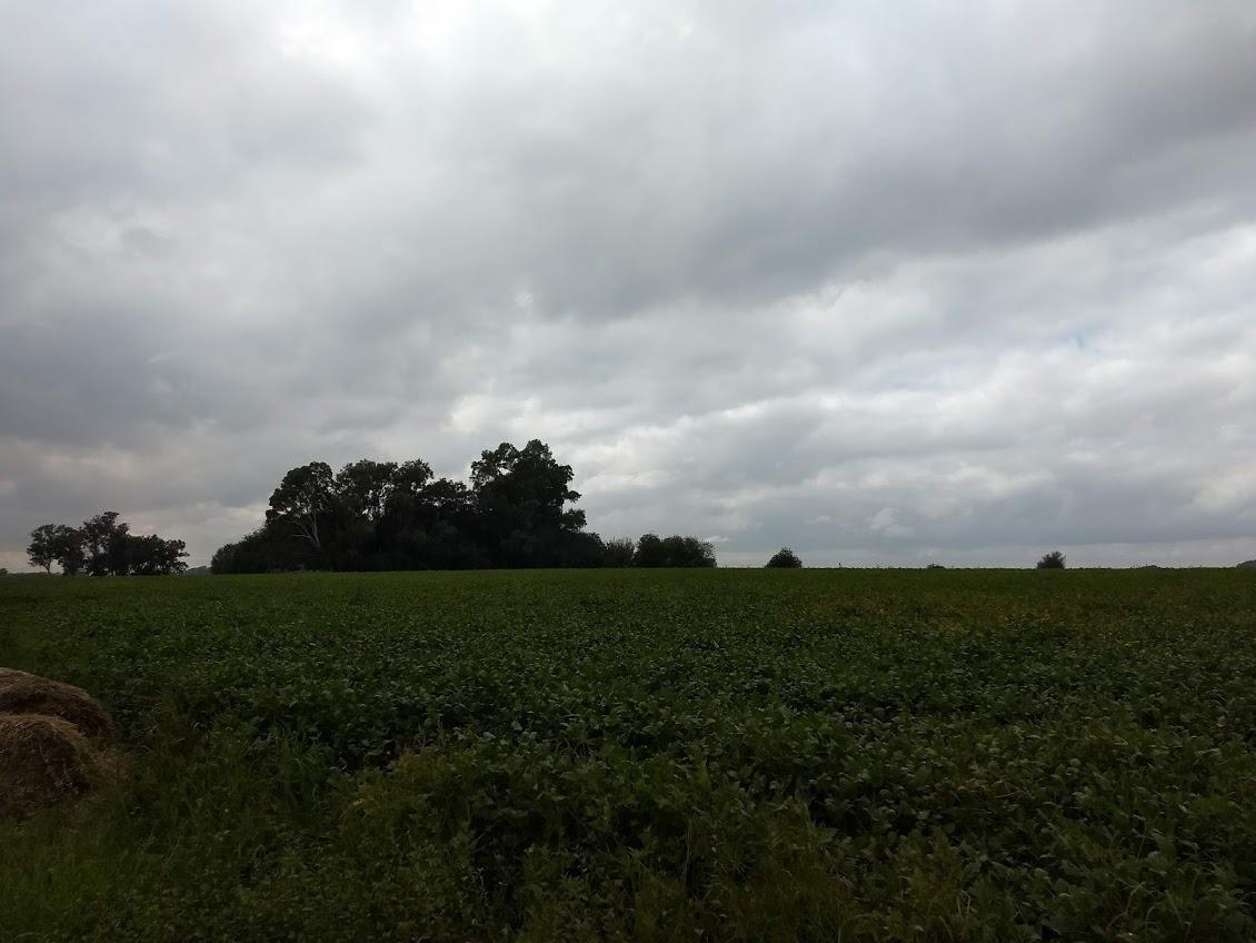 excelente campo agrícola en torres