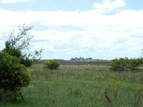 excelente campo sobre ruta 74. 65 hectáreas
