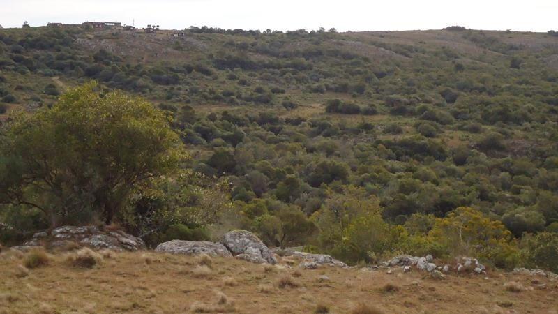 excelente campo turístico ganadero en villa serrana.