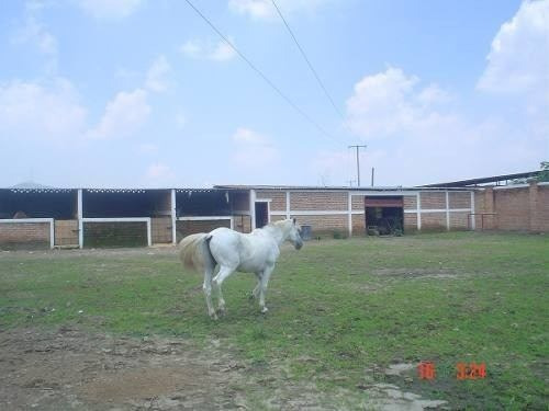 excelente casa de campo venta!!! 2 hectáreas $40,000,000
