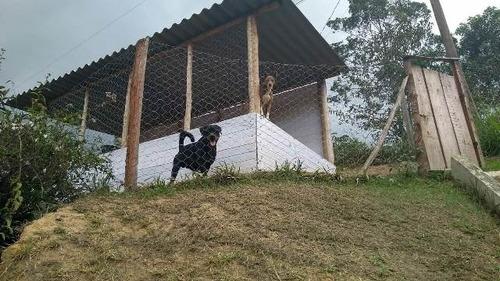 excelente chácara no bairro fazenda santa rita - ref 4568