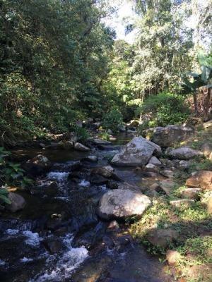 excelente chácara no bairro rio do peixe 6000m² - ref  4749