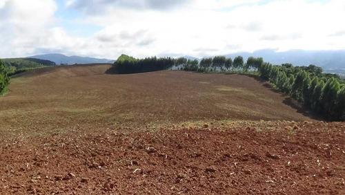 excelente fazenda a venda em andradas-mg 100 hectares - 1206