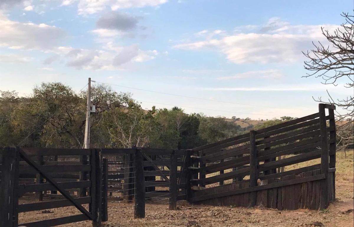 excelente fazenda cria e recriar de gado