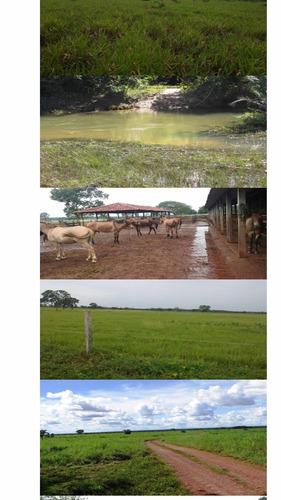 excelente fazenda dupla aptidão estado do tocantins