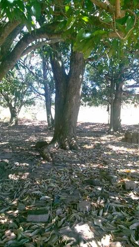 excelente fazenda dupla aptidão tupaciguara